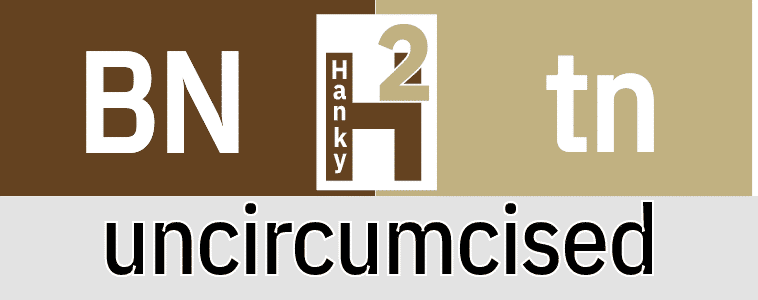 Hanky Code Pair Arrow for uncircumcised / BROWN 2 tan