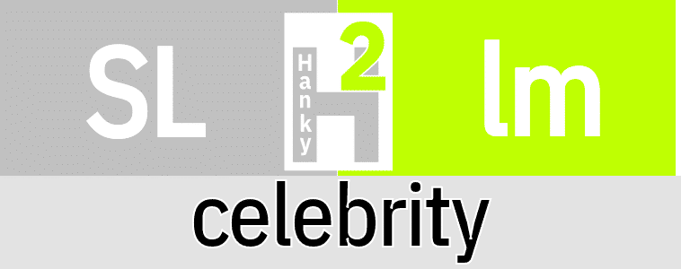 Hanky Code Pair Arrow for celebrity / SILVER 2 lime