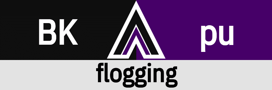 Hanky Code Pair Arrow for flogging fetish / BLACK 2 purple