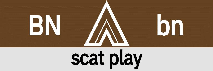 Hanky Code Pair Arrow for scat play fetish / BROWN