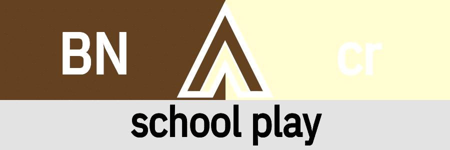 Hanky Code Pair Arrow for school play fetish / BROWN 2 cream