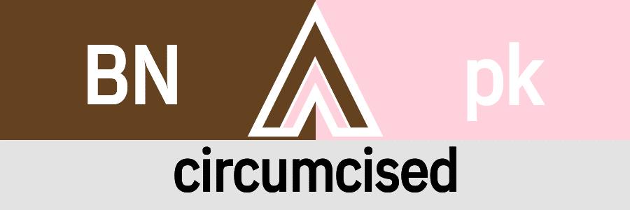 Hanky Code Pair Arrow for circumcised fetish / BROWN 2 pink