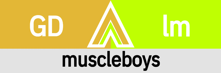 Hanky Code Pair Arrow for muscleboys fetish / GOLD 2 lime