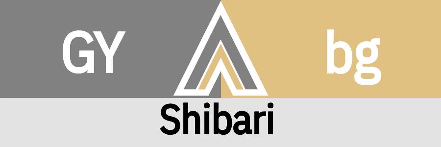 Hanky Code Pair Arrow for Shibari fetish / GRAY 2 beige