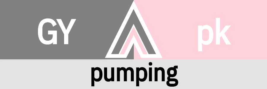 Hanky Code Pair Arrow for pumping fetish / GRAY 2 pink