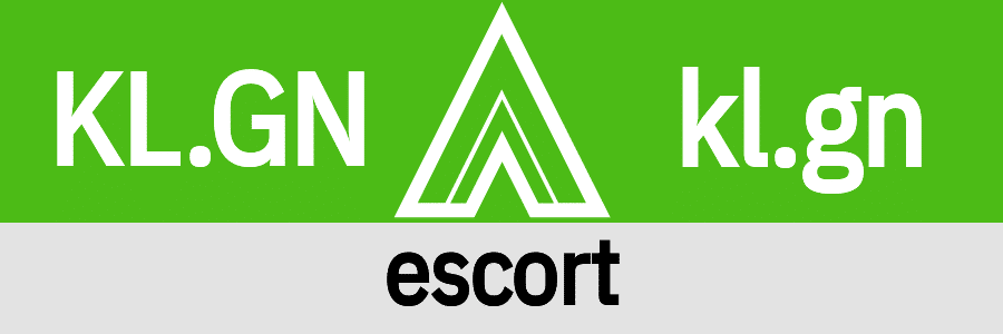 Hanky Code Pair Arrow for escort fetish / KELLY.GREEN